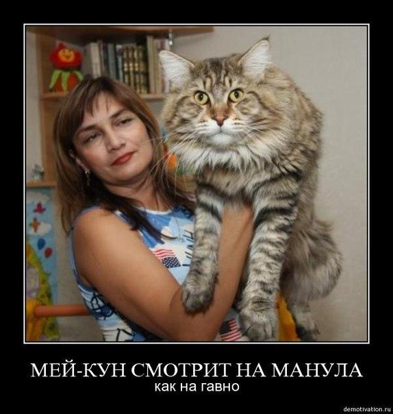 """Фото,  """"с интернета по нитке.  Текст честно стырен тут http://www.krasnyidar.ru/index.php?id=30."""